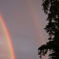 Double Rainbow by Andrea Lawrence