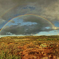 Double Rainbow Over Desert  by Theo O'Connor