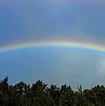 Double Rainbows by Pamela Walton