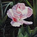 Double Sassy Tulip by Lea Novak