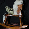 Double Seat Rocking Horse by Donna Brown
