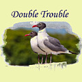 Double Trouble 2 by John M Bailey