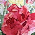 Double Tulip by Bonnie Young