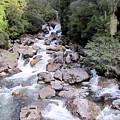Doubtful Sound by Joyce Woodhouse