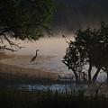 Douglas Lake by Douglas Stucky