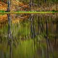 Down At Pecks Pond by Karol Livote
