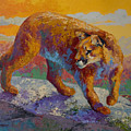 Down Off The Ridge - Cougar by Marion Rose