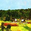 Down On The Farm by RC DeWinter
