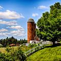 Down On The Farm by Tricia Marchlik