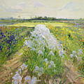 Down The Line by Timothy Easton