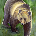 Downhill Grizzly by Marsha Karle