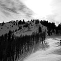 Downhill by Pixabay