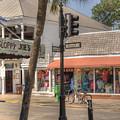 Downtown Key West by Juli Scalzi
