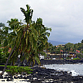 Downtown Kona by Athala Carole Bruckner