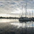 Downy Soft Clouds At The Marina by Georgia Mizuleva