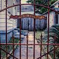 Dr. Lines Gate - Nola by Kathleen K Parker