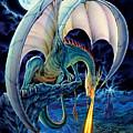 Dragon Causeway by The Dragon Chronicles - Robin Ko