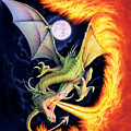 Dragon Fire by The Dragon Chronicles
