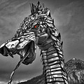 Dragon by Raven Steel Design