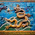 Dragon Wall by Henrik Lehnerer