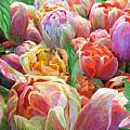 Dragonflies And Tulips by Carol Cavalaris
