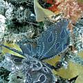 Dragonfly Holiday by Liza Eckardt