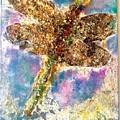 Dragonfly Transformation