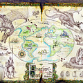 Dragons Of The World by The Dragon Chronicles - Garry Wa