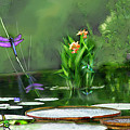 Dragons On The Pond by Lisa Redfern