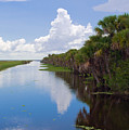Drainage Canals Make Farming Possible In Florida by Allan  Hughes