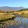 Drakensberg Amphitheatre Mountain Range In Kwazulu Natal, South Africa by Wesley Lazarus