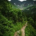 Dramatic Mountain Landscape With Distinctive Green by Jozef Jankola