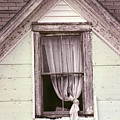 Drapes by William Tasker
