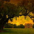 Drayton Hall Plantation In Charleston by Susanne Van Hulst