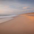 Dream Beach by Susan Cole Kelly