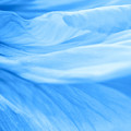 Dream Blue by Angela Doelling AD DESIGN Photo and PhotoArt