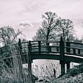 Dream Bridge by Melissa Leda