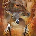 Dream Catcher - Autumn Deer by Carol Cavalaris