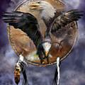 Dream Catcher - Spirit Eagle 3 by Carol Cavalaris