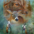 Dream Catcher - Spirit Of The Deer by Carol Cavalaris
