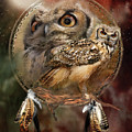 Dream Catcher - Spirit Of The Owl by Carol Cavalaris