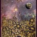 Dream Garden by Darin Baker