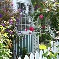Dream Garden by John Loyd Rushing