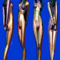 Dreamgirls by Rafael Salazar