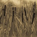 Dreaming Of Cattails by DigiArt Diaries by Vicky B Fuller