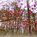 Dreaming Of Spring by Regina Strehl