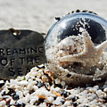 Dreaming Of The Sea by Pamela Walton