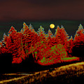 Dreaming Tree Moon by JoAnn SkyWatcher
