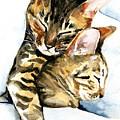 Dreamland - Bengal And Savannah Cat Painting by Dora Hathazi Mendes