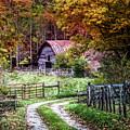 Dreams On The Farm by Debra and Dave Vanderlaan